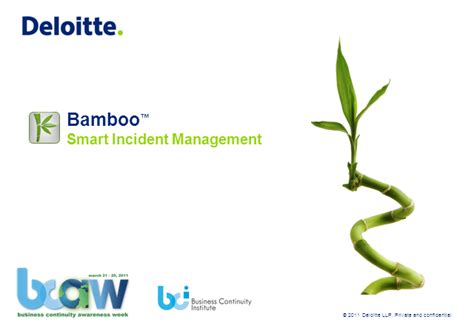 Deloitte Webcast Calendar Bamboo Bc On Your Smartphone