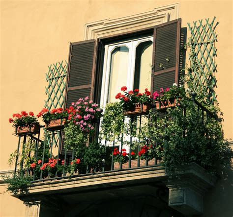 Balcony Flowers | flowers on balconies