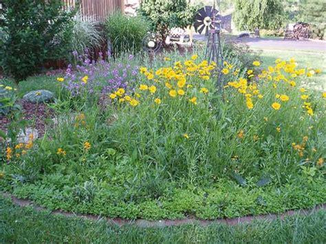 Wildflower Garden Ideas Flower Garden Design Intersiec