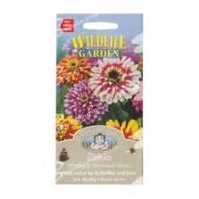 Jual Bibit Bunga Gerbera jual bibit benih bunga gerbera mixed isi 20 biji bibitbunga