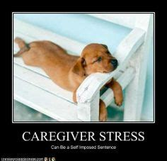 Funny Stress Memes - things i would probably say on pinterest 30 pins