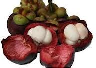 cara membuat jus kulit mangga cara membuat jus buah dan sayur terlengkap 2012