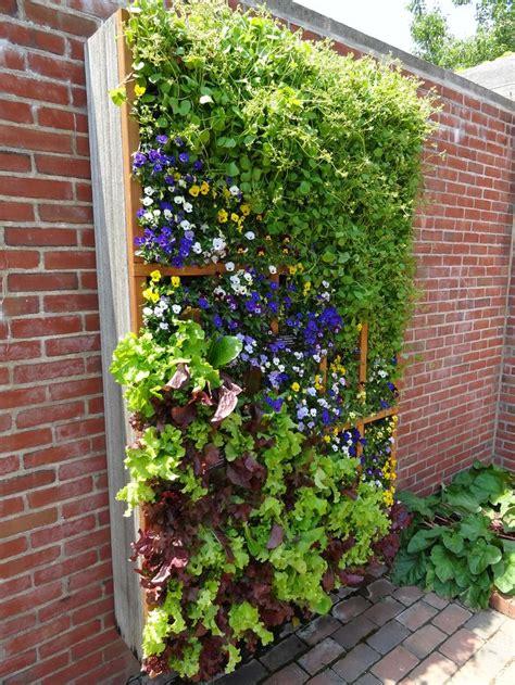 wall herb garden 139 best vertical gardens living walls images on
