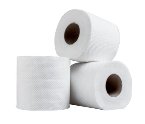 Paper Roll PNG Transparent Image - PngPix Empty Toilet Paper Roll Png