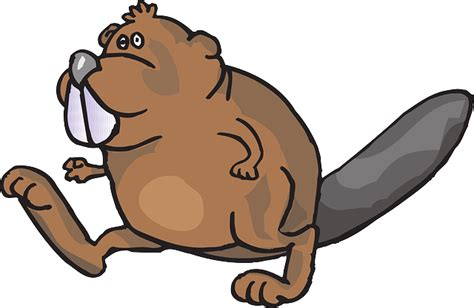 beaver clip beaver walking animal 183 free vector graphic on pixabay