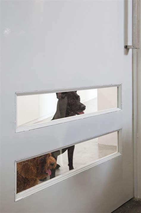 misura casa una casa a misura di cani in animali pucciosi