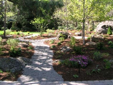 high desert garden ideas photograph landscaping in the hig