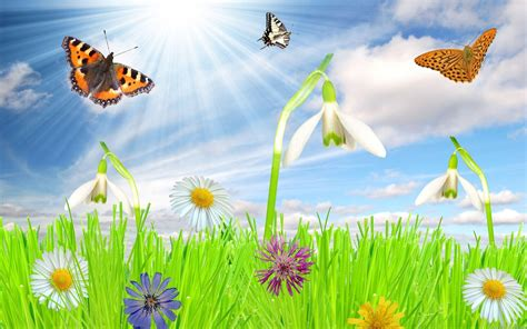 windows background themes spring free spring backgrounds desktop wallpaper cave