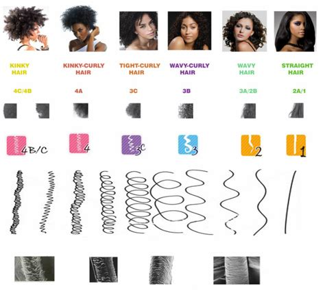 Types Of Damaged Hair by The Andre Walker System Hair Typing Chart The Salon And