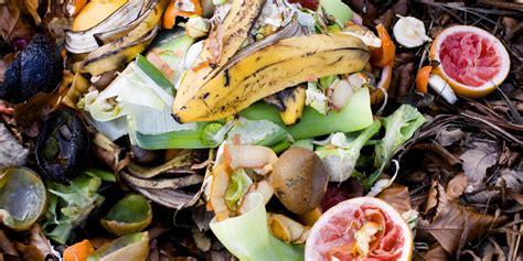 gli sprechi alimentari in italia dati e consigli