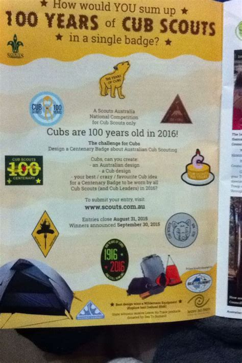 new year activities for cubs 17 best images about 100 years of cubs on
