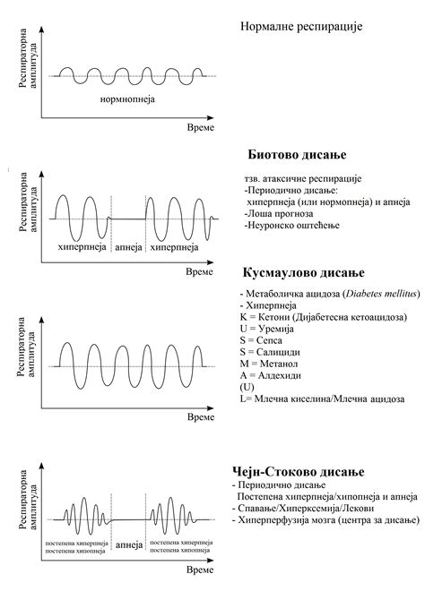 breathing pattern video file breathing abnormalities serbian png wikimedia commons