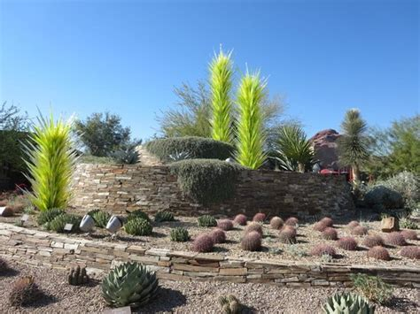 Desert Botanical Garden Hours by Beautiful Chihuly Sculpture Picture Of Desert Botanical