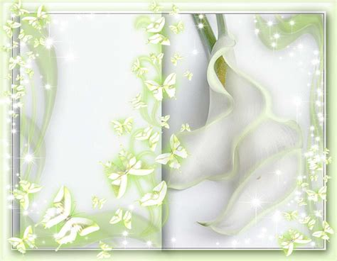 cornici powerpoint free wedding backgrounds frames free border frames