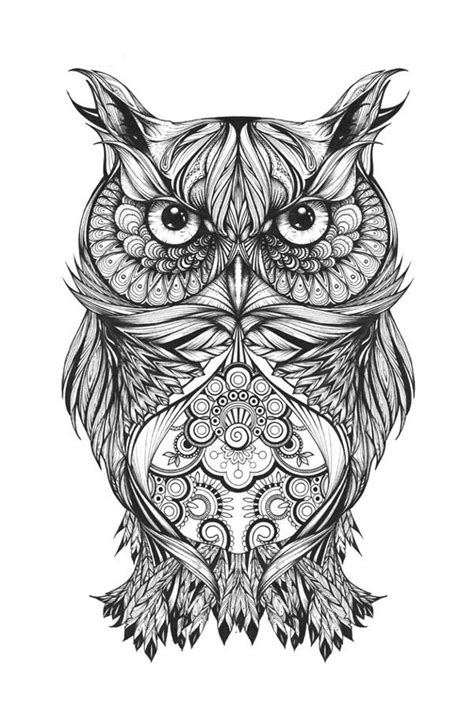coloring pages for adults abstract owls owl coloring pictures for adults img 731714 gianfreda net