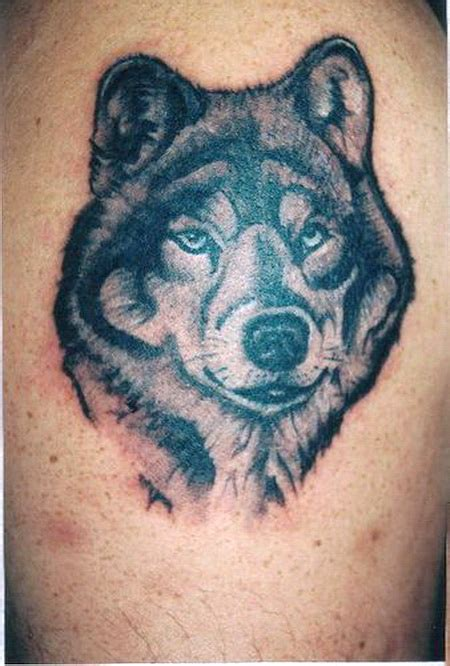 awesome wolf tattoo designs cool wolf tattoos gae imagenes