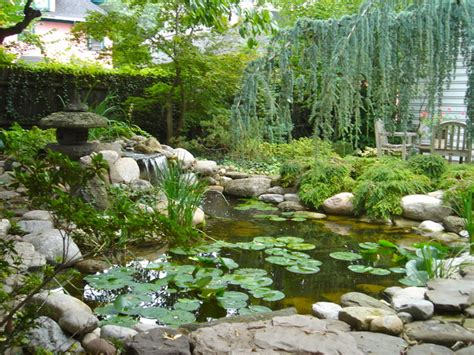 waterfall fish ponds renovations and redesign or rebuild