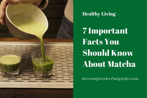 Benefits Of You Should About by 7 Surprising Health Benefits Of Matcha Tea