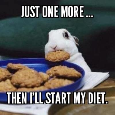 On A Diet Meme - diet meme google search random crack ups pinterest
