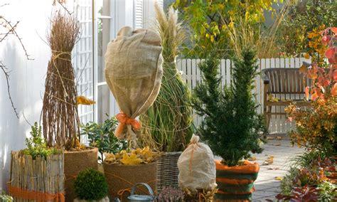 Pflanzen Winterfest Machen by Garten Winterfest Machen Das Haus