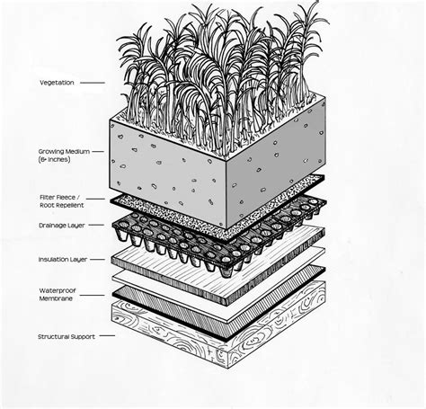 green roof section intensive green roofs a primer green roof plan