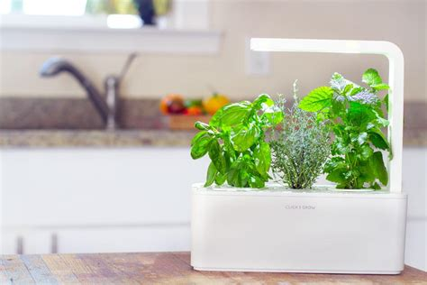 the new click amp grow smart herb garden launches worldwide