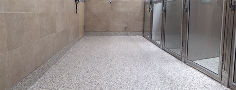 consurco remodeled veterinary clinic modernizes concrete flooring