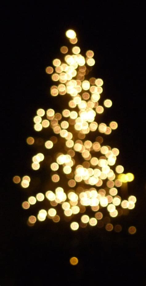 bokeh photography a showcase of christmas tree bokeh