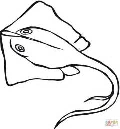 stingrays coloring pages stingray coloring page free printable coloring pages