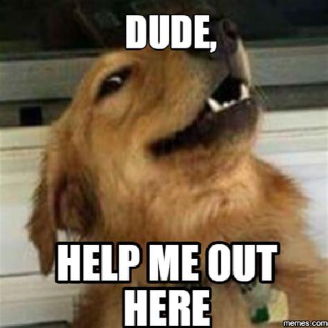 Help Me Meme - home memes com