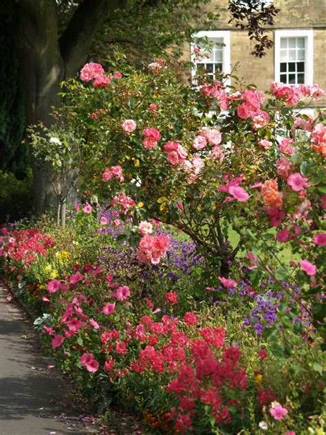 types of flower gardens 30 ways to incorporate roses into your backyard