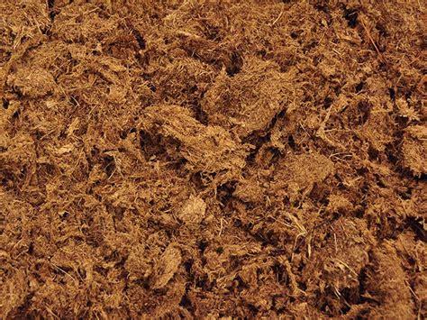 peat moss vegetable garden mulch garden ftempo