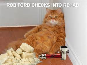 Current event cat of the day rob ford s latest crack video and more