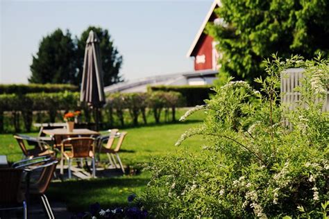 хедмарк норвегия фото