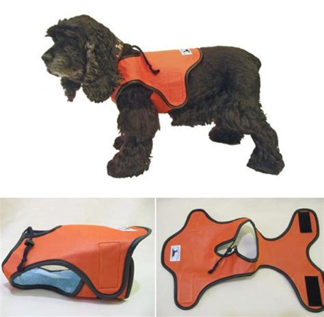 gadgets for pets 15 useful and innovative gadgets design swan