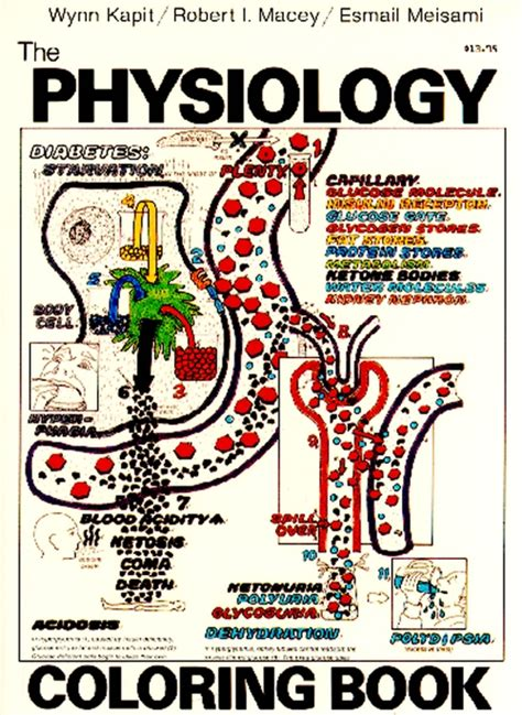 anatomy and physiology coloring workbook answers developmental aspects of the muscular system featuring practical guide to tcvm 1 emergencies and five