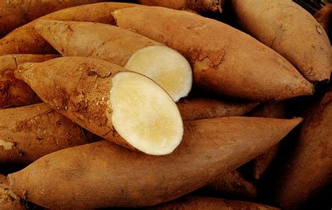 Teh Yacon meet yacon the unsung sweet potato clean plates