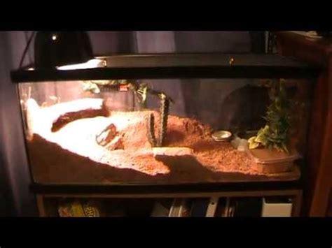 Bearded L Setup by Leopard Gecko Tank Setup With Zoo Med Excavator