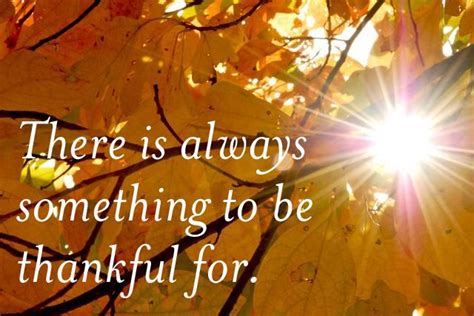thanksgiving thankful quotes thankful quotes thanksgiving positivity quotes we