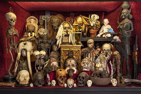 Cabinet Of Curiosities by The Rectification Of Names Cheap Cabinet Of