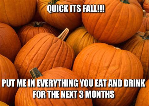 Fall Meme - fall is here and so are the memes