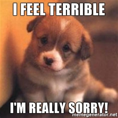 I Am Sorry Meme - i feel terrible i m really sorry cute puppy meme