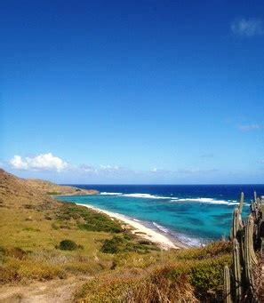 desert island survival   virgin islands panash adventures