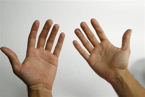 imagenes de manos haciendo ok les cortan las manos a seis ladrones en jalisco