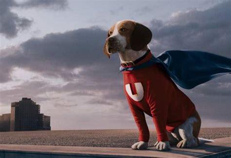 film anjing paling sedih 15 film tentang anjing paling legendaris