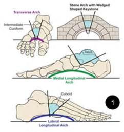 dolore arco plantare interno come liberarsi dai dolori piede piatto con la