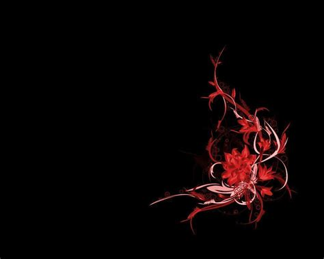 background design black and red red flower black backgrounds wallpaper cave