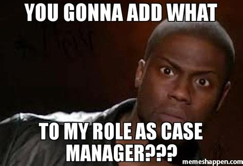 Meme Case - you gonna add what to my role as case manager meme