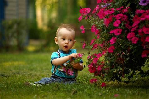 Free Images Grass Person People Plant Lawn Meadow Play Flower Boy Kid Summer Spring Pictures Of Small Children