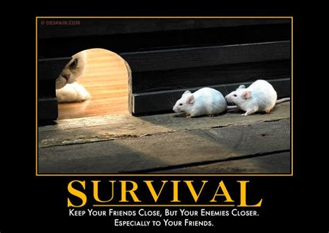 don t say dumb surviving a parent s worst nightmare books survival keep your friends but your enemies